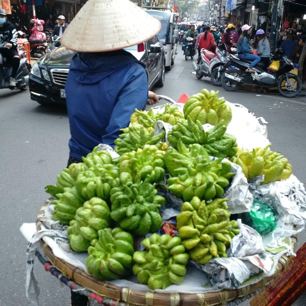 Dept. of indeterminate thingies, Hanoi.