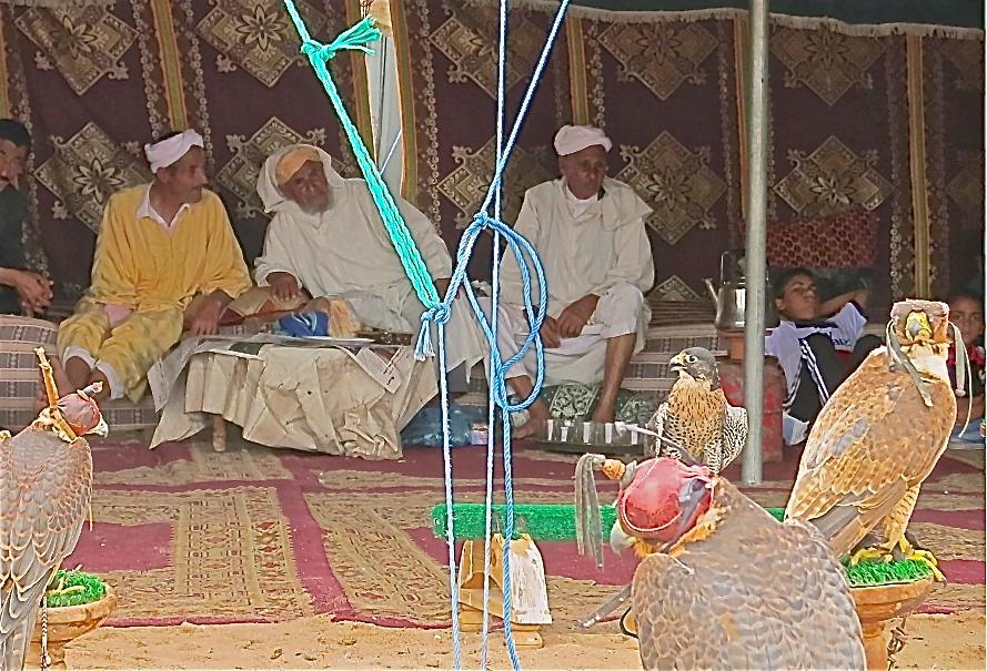 Berber  moussem ,   El Jadida.