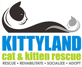 kittyland.png