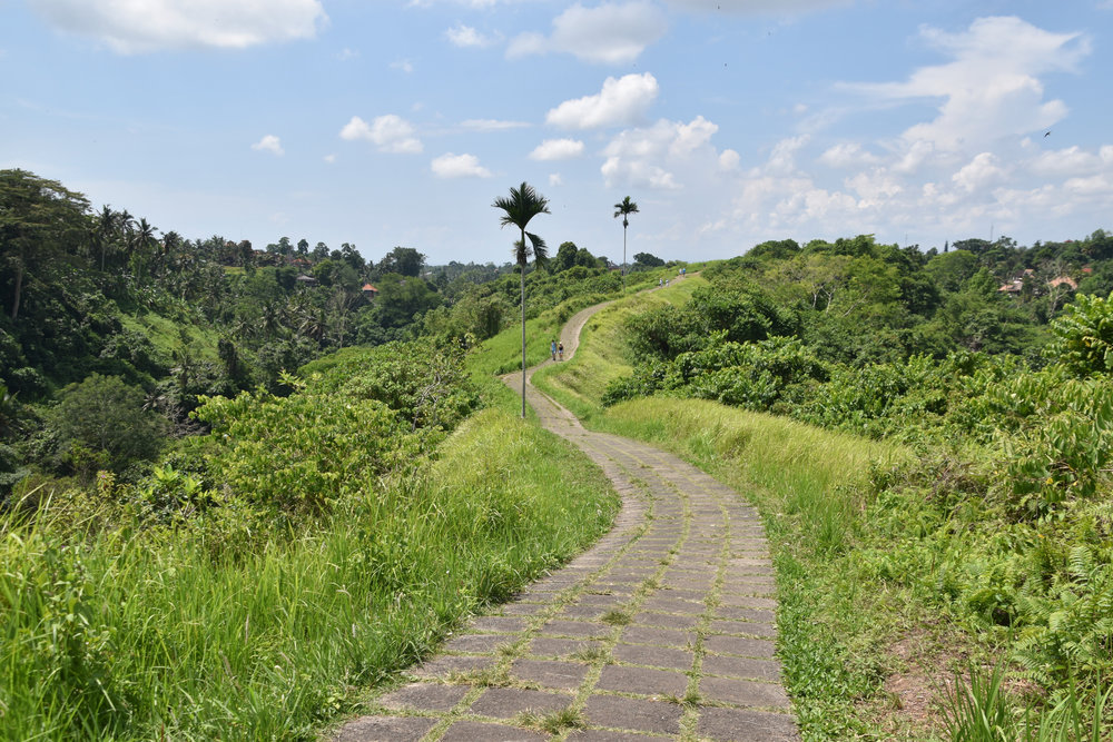Campuhan Ridge Walk in Ubud