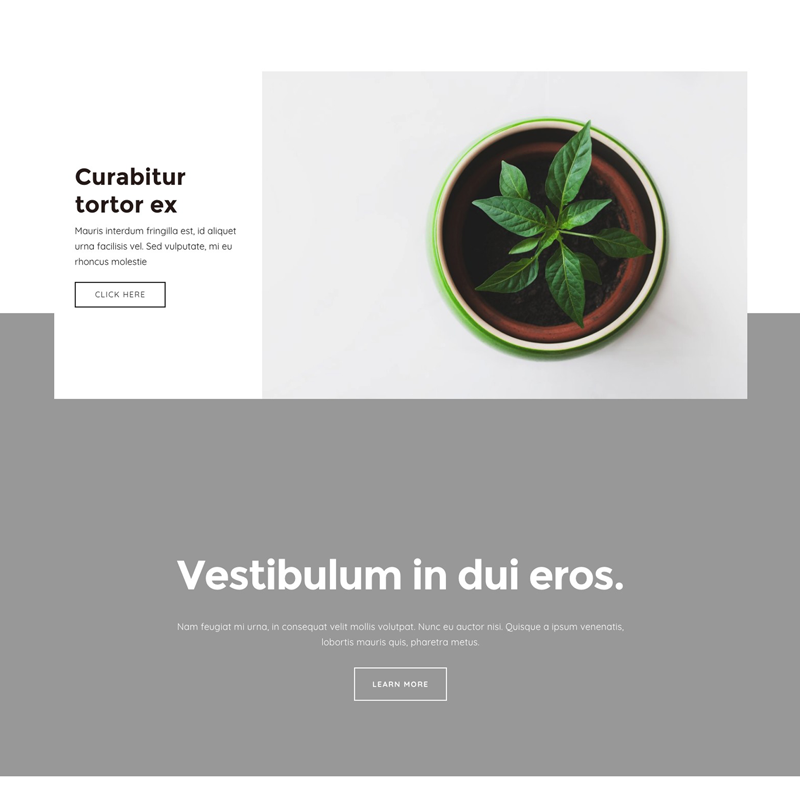 Example of how to create floating elements in Squarespace without code