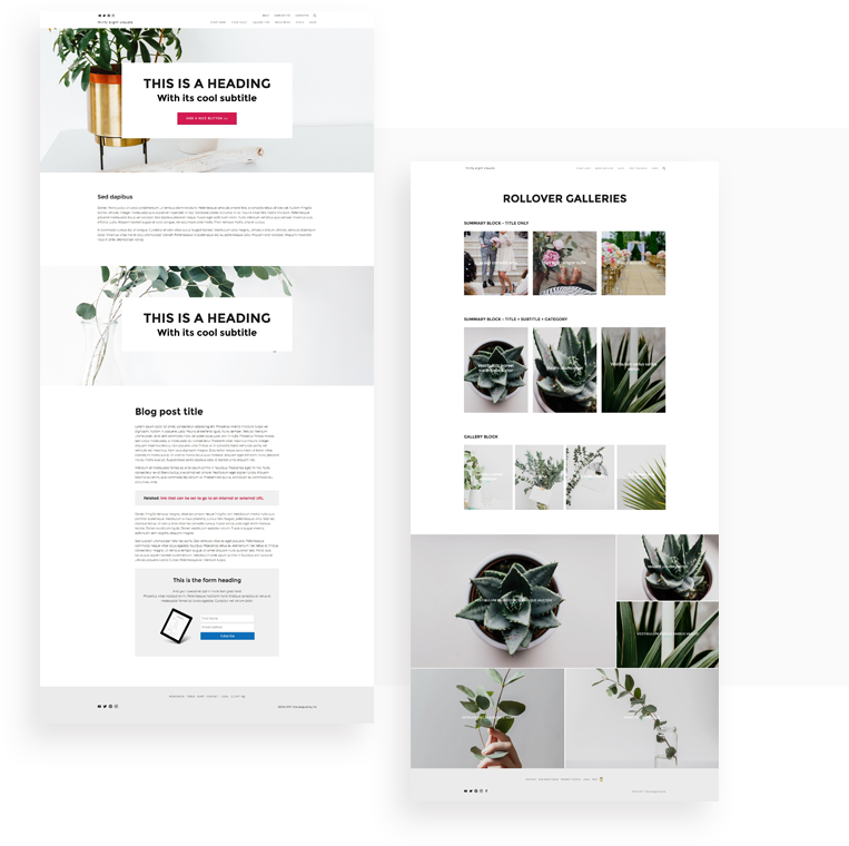Squarespace customization service examples.png