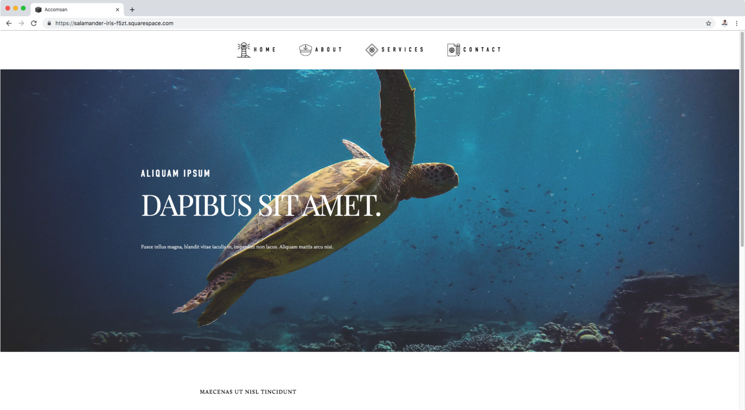 A CSS trick to add icons to your navigation links in Squarespace