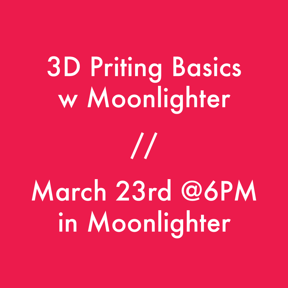 3DP-Moonlighter.png