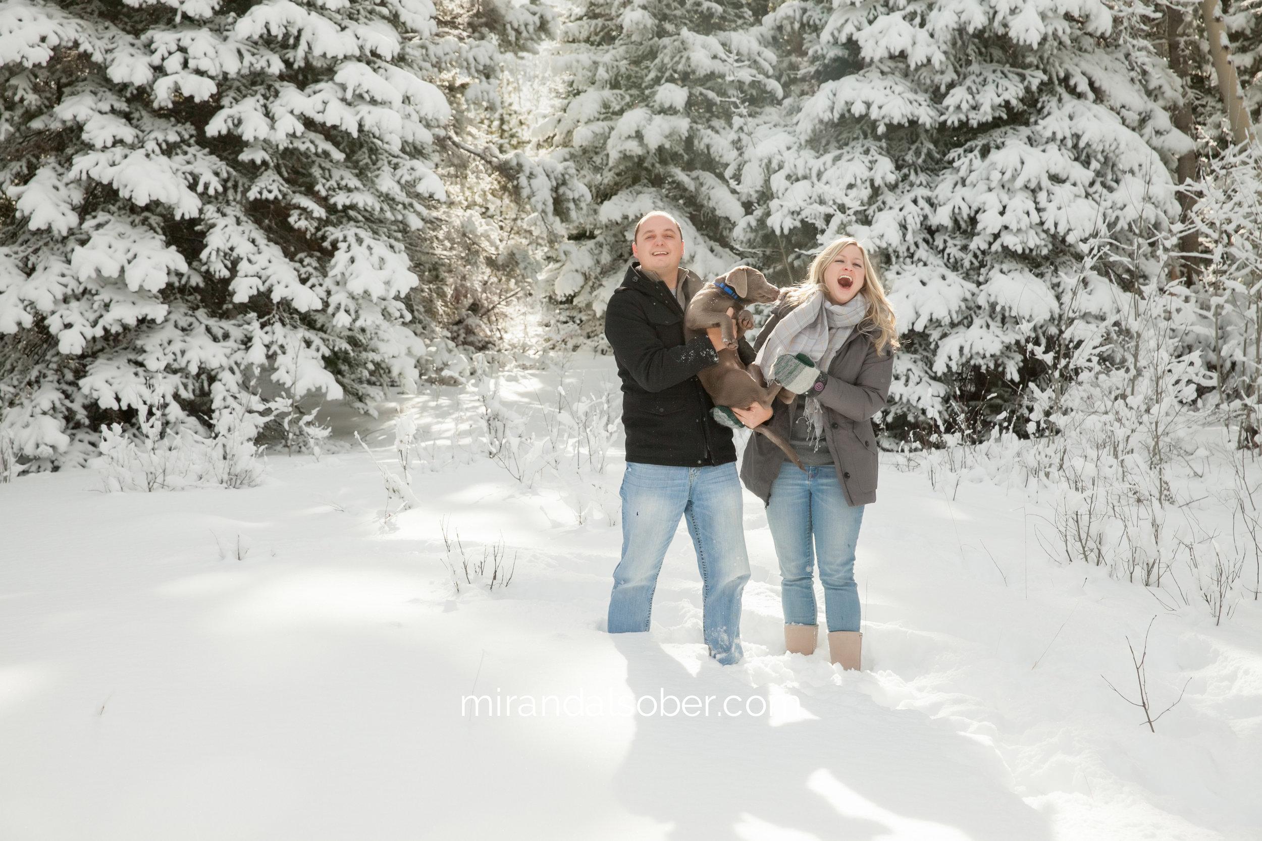 fort collins holiday photos, Miranda L. Sober Photography, snow photos