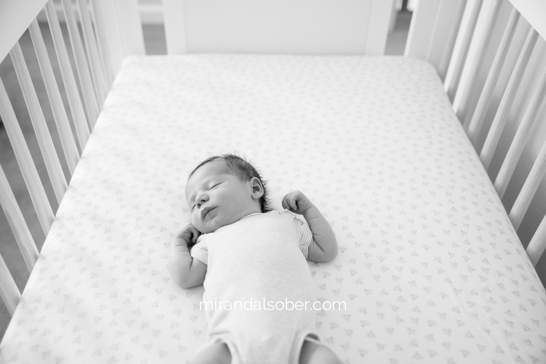 Fort Collins baby photographers, Miranda L. Sober Photography