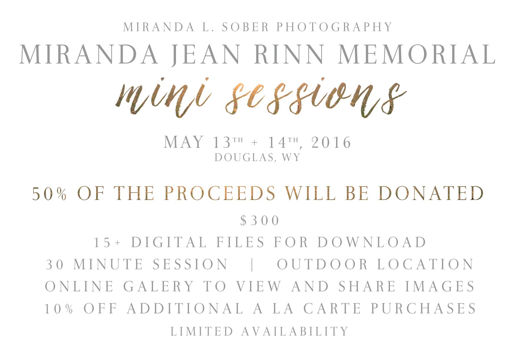 Photography Donation, Miranda L. Sober Photography Mini Sessions