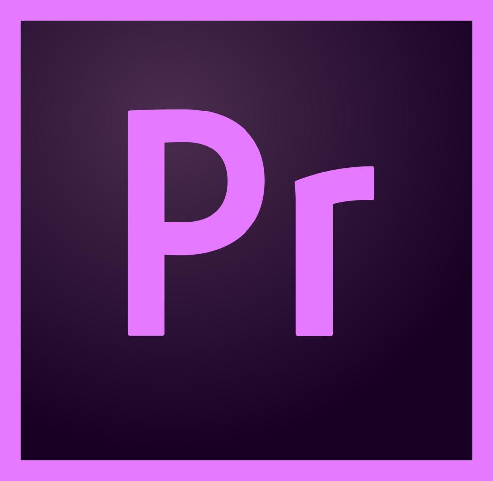 Premiere Pro   Jeg er erfaren bruger og navigerer let i programmets funktioner.