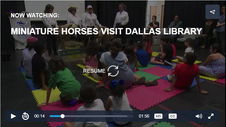 Miniature horses visit Dallas library