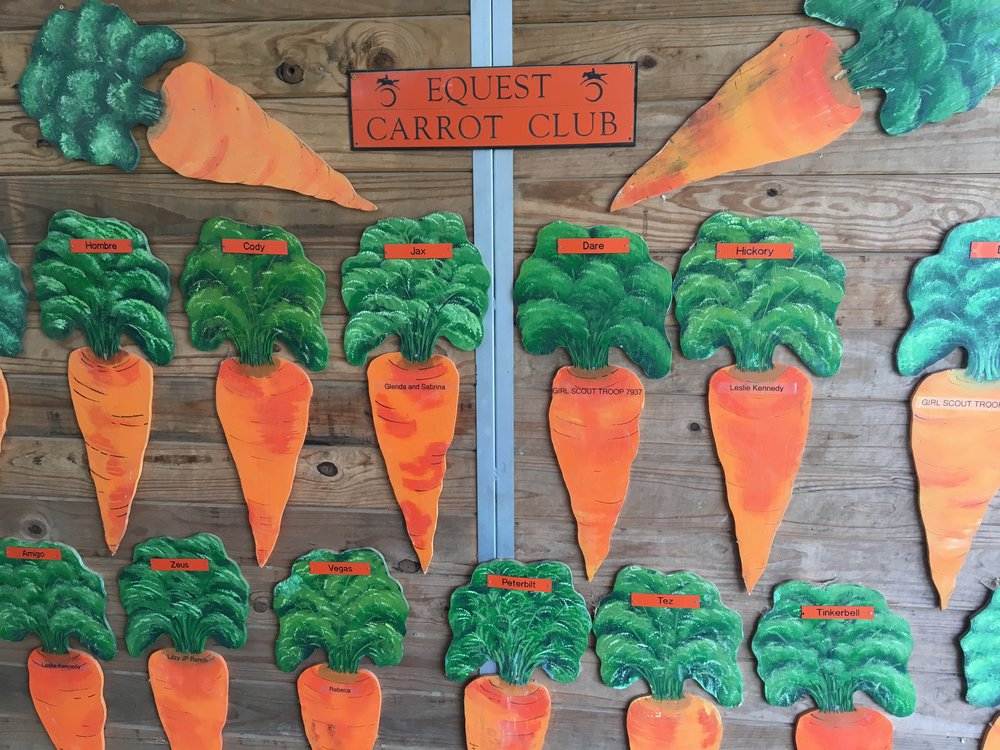 Carrot Club Wall.JPG