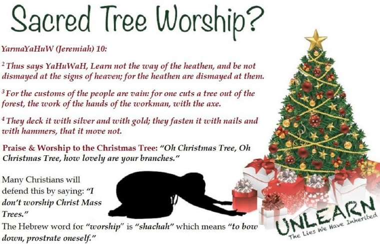 tree_worshipjpg - Origin Of Christmas Tree