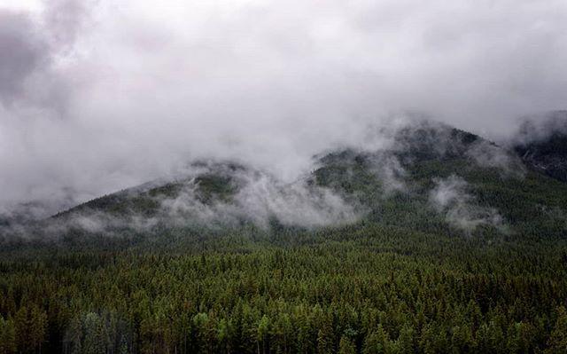 Clouds cover Sulphur Mountian, looking from the Banff Fairmont Springs. Banff, Alberta, June 2018. . . . . #banff #banffnationalpark #fairmontbanffsprings #parkscanada #naturephotography #explorebanff #ExploreCanada #canada
