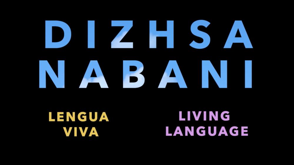 Dizhsa Nabani