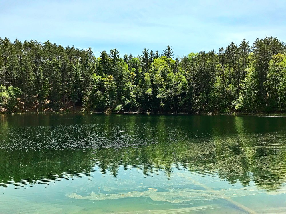The pollen covered, tropical-looking waters of Lost Lake. I can almost see jim in his canoe gleefully floating about. (c) Erika Galentin