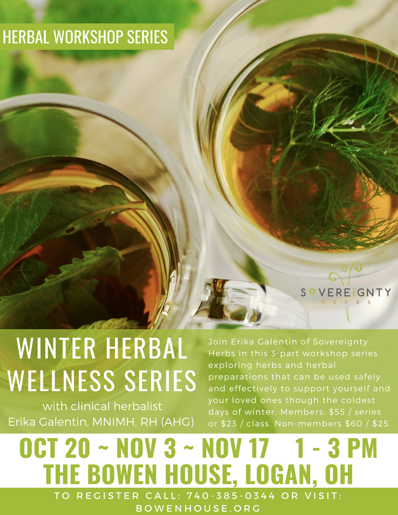 Winter Herbal Wellness Flyer.jpg