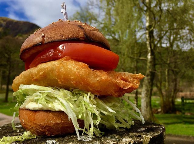 Today's freshest cod in a Brioche bun with tartare sauce & fries only £10.50