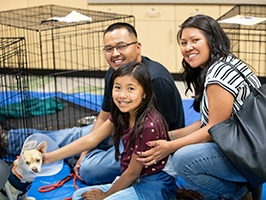 Adopt - They say you can't buy love, but we know you can adopt it when you open your home to a shelter pet in need. Homeless pets are grateful, loving companions that bring joy and enrichment to our lives. With over 17,000 pets coming into PACC every year, there is an endless variety of cats, dogs, and more that are waiting to meet you right now!Click the button below to learn more about adopting from PACC and to see all of the available pets at the shelter.Thank you for saving a life!