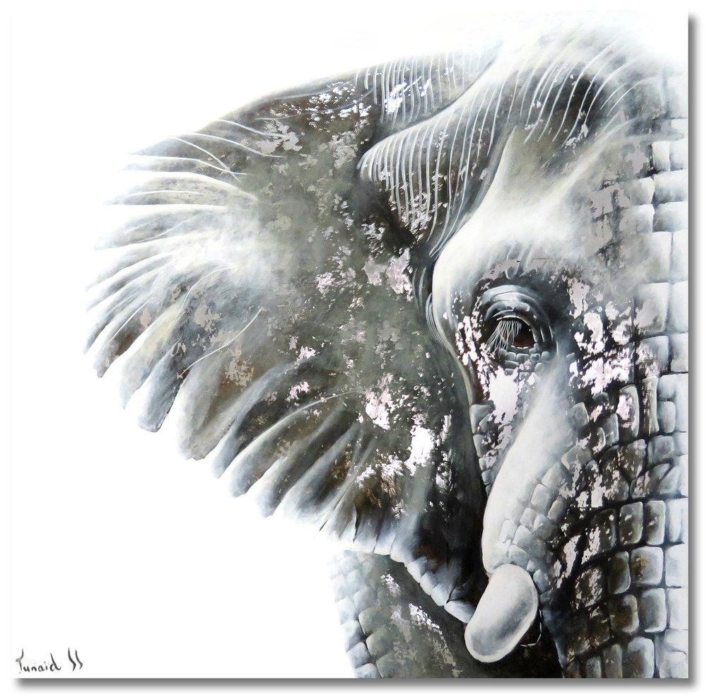 Wildlife Elephant Portrait nr. 53 by Junaid Sénéchal-Senekal.jpg