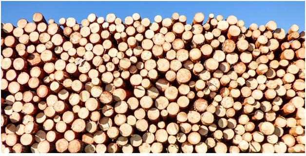 teak wood.png