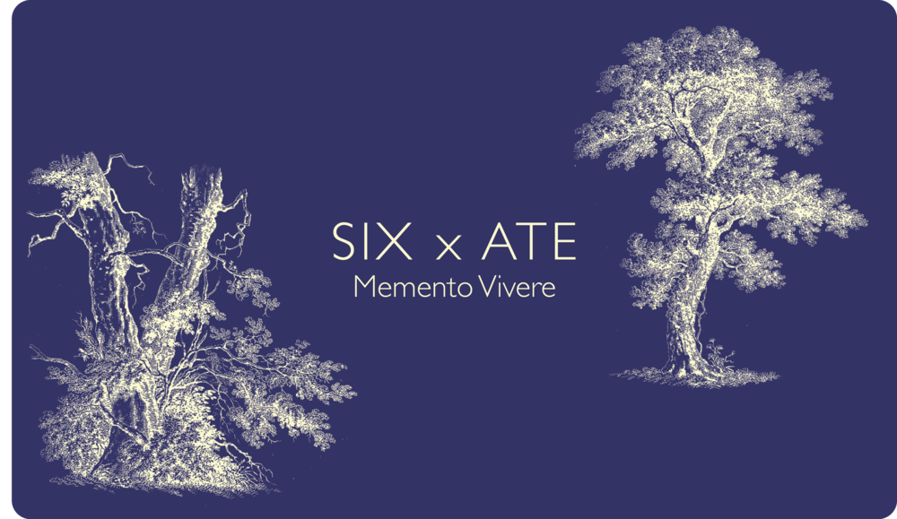Memento Vivere October 5th Society for Contemporary Craft Tickets on Sale September 15th