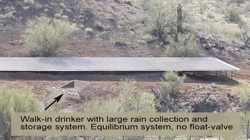Arizona Rain Collection Roof