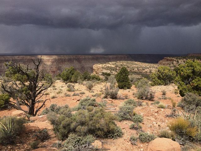 Kanab Canyon Arizona