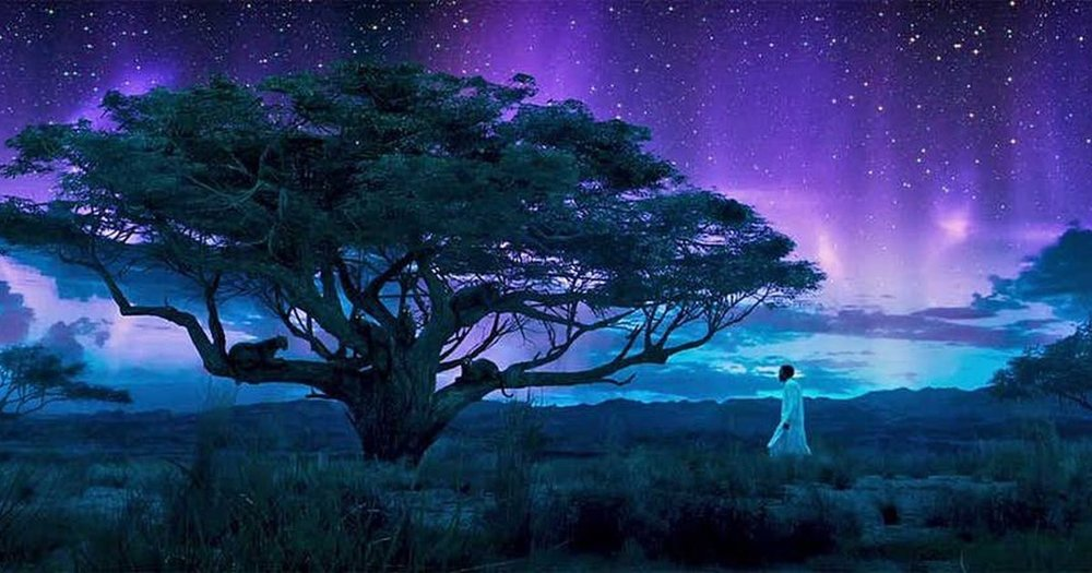 Chadwick Boseman as T'Challa, experiencing a spiritual event on the ancestral plain