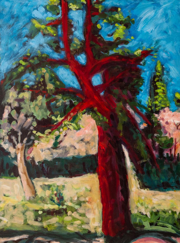 Red tree, Spain