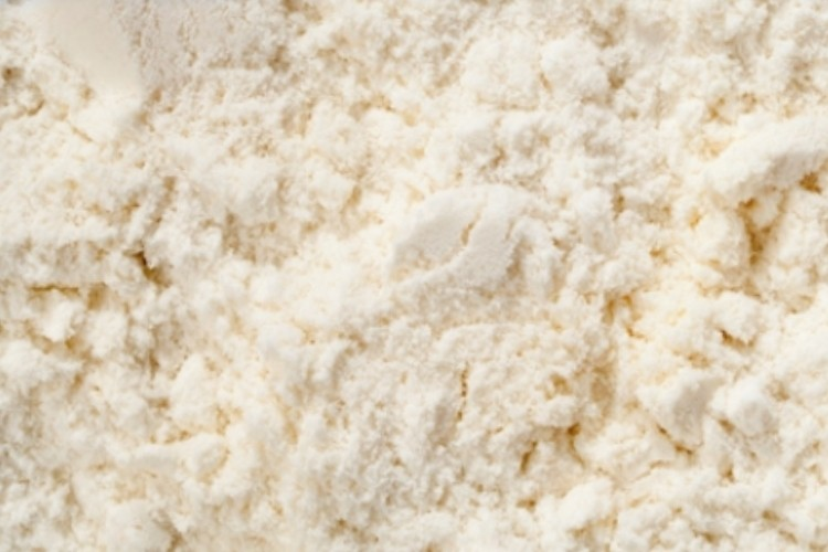 Skim milk powder, full cream milk powder, whey powder blends, butter milk powder and blends