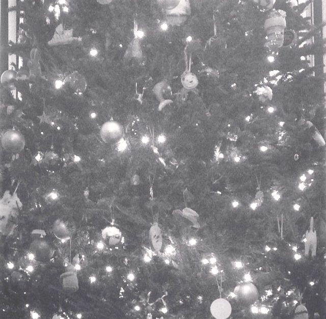 5 stocking