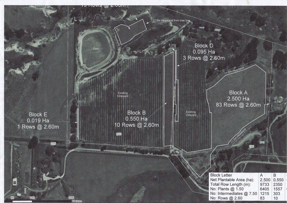 Ward Vineyard Map.jpg