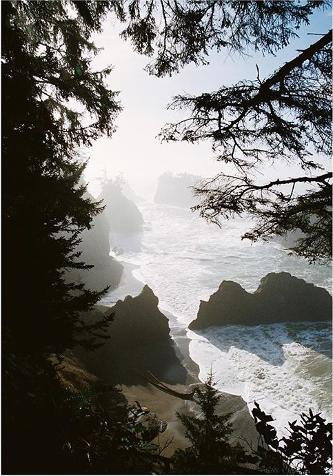 Coast.jpg