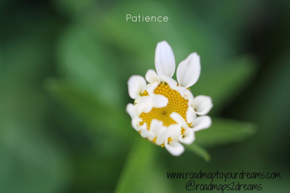 Patience.  Somethings should not be rushed.