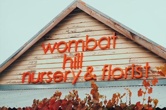wombat hill flolrist