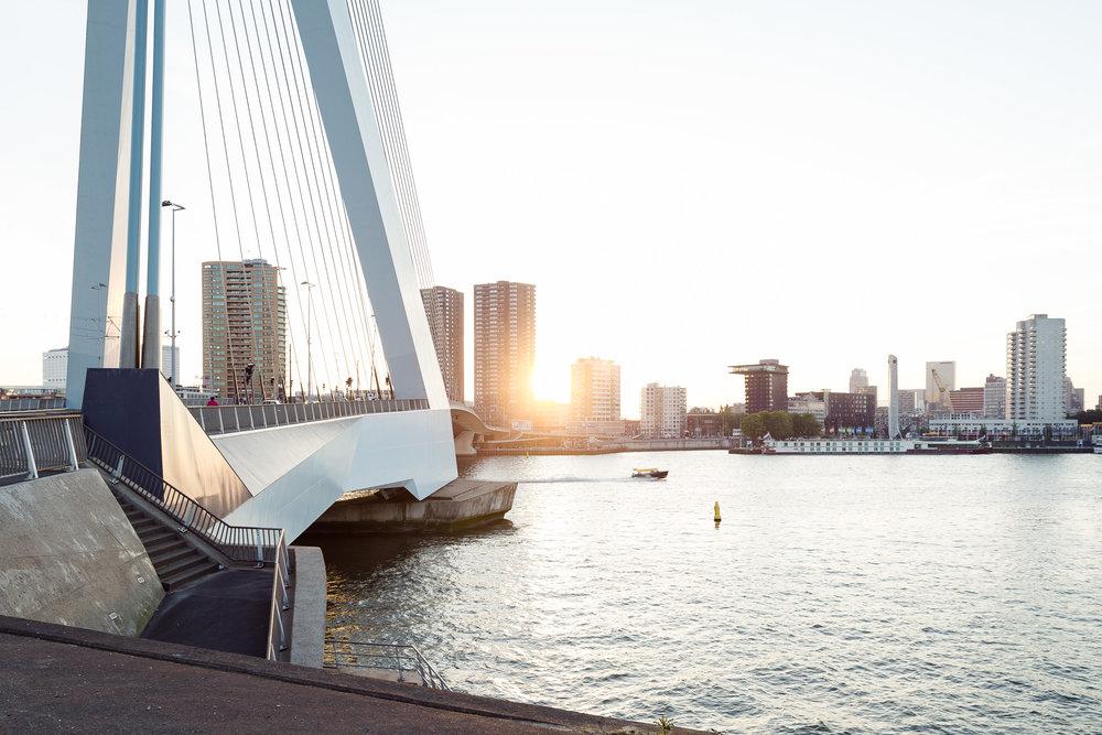 20140606 Rotterdam, Erasmusbrug 01.jpg