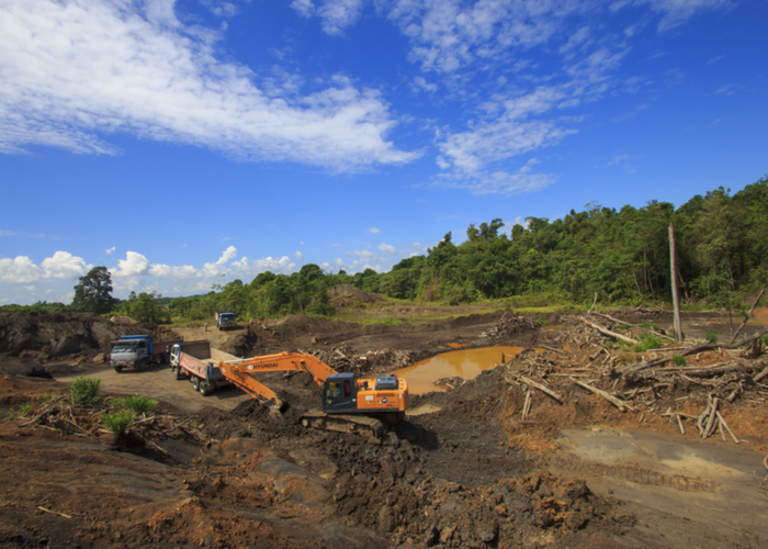 deforestation2_shutterstock_307276406.jpg