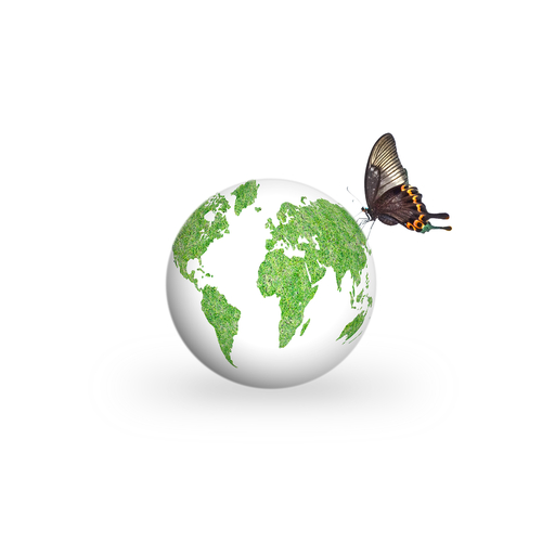 environment_shutterstock_282712793.jpg