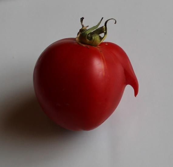 uglyfruit.jpg