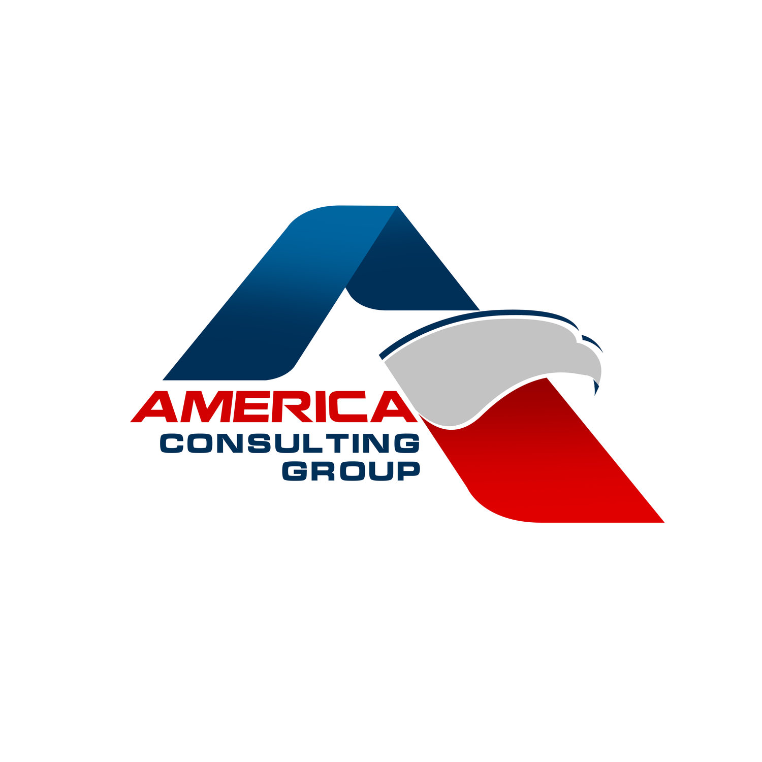 AMERICA CONSULTING GROUP, LLC