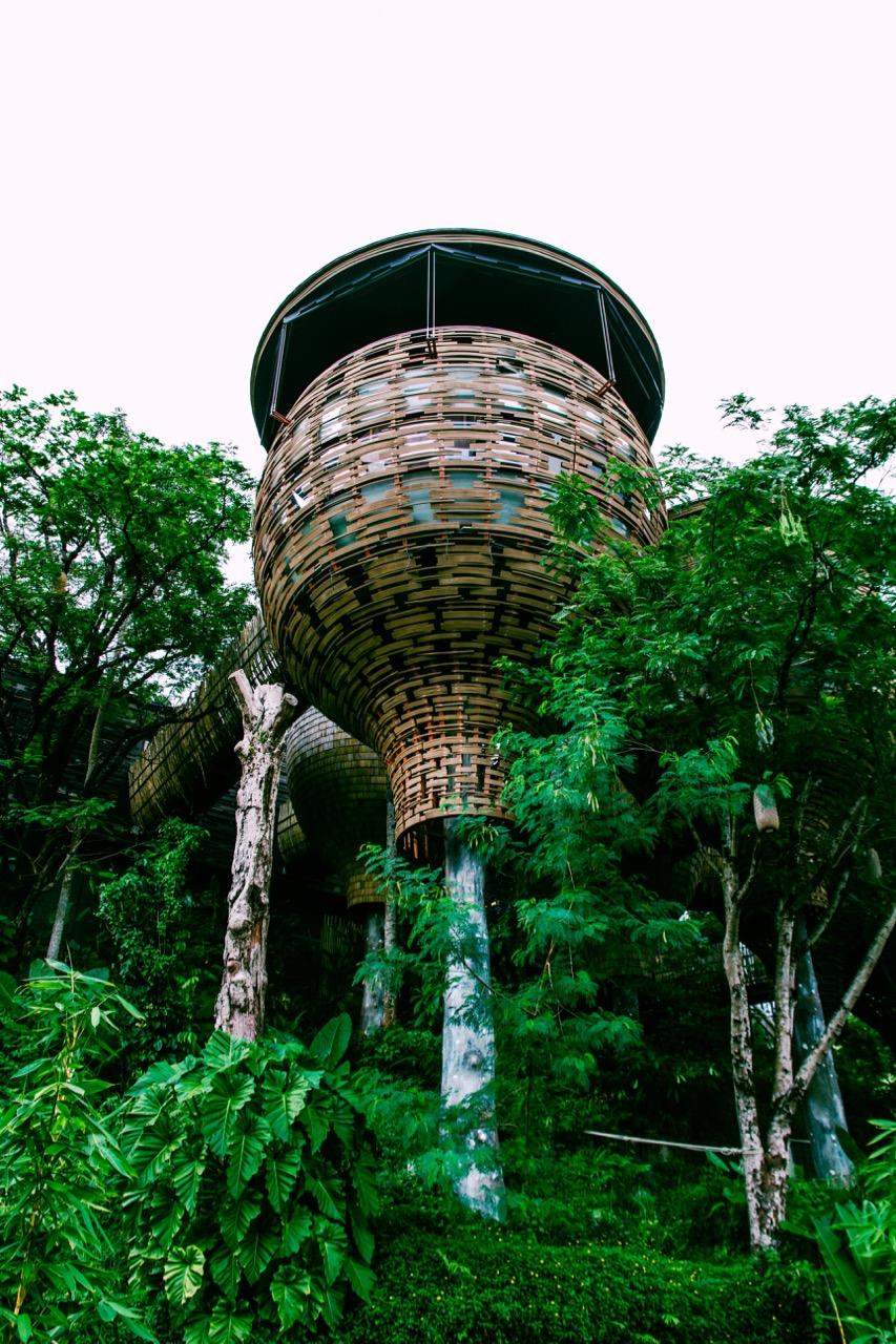 鳥籠造型的樹屋