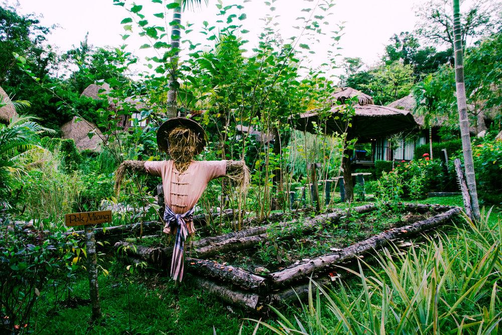 The garden at Keemala