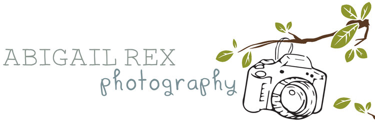 Abigail Rex Photography