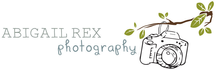 Abigail Rex - Sussex Wedding Photographer