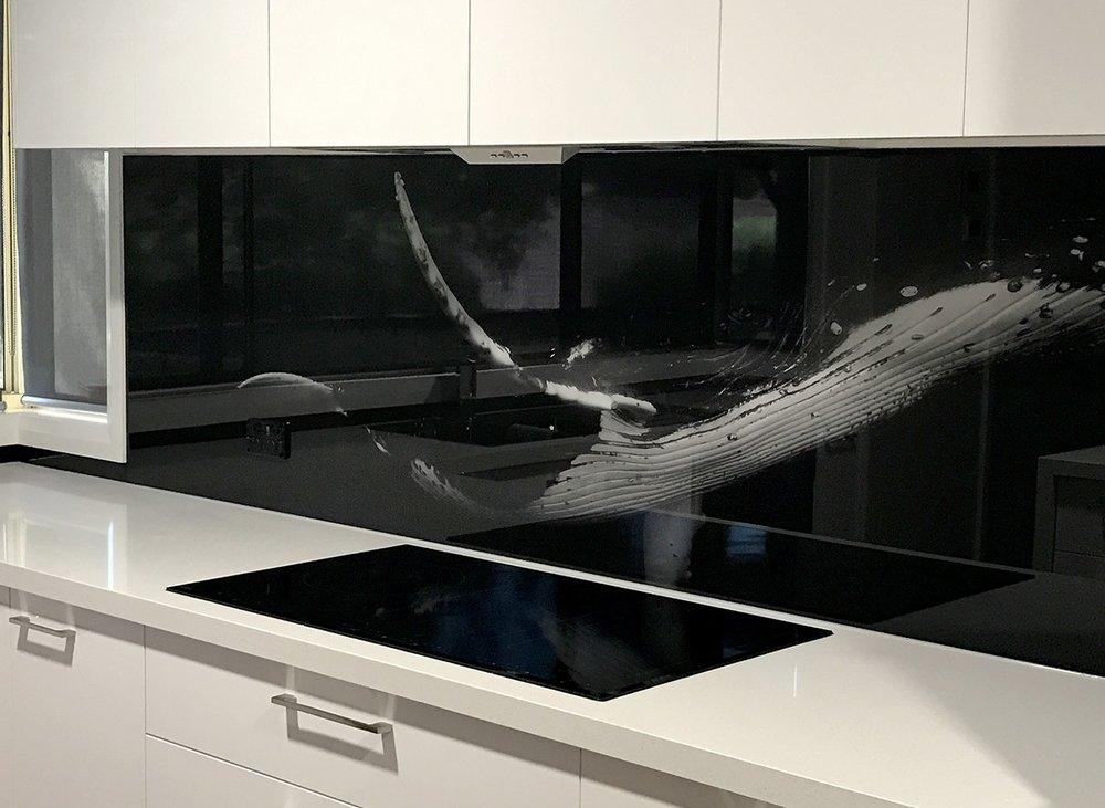 House of Splashbacks - Whale Printed Glass