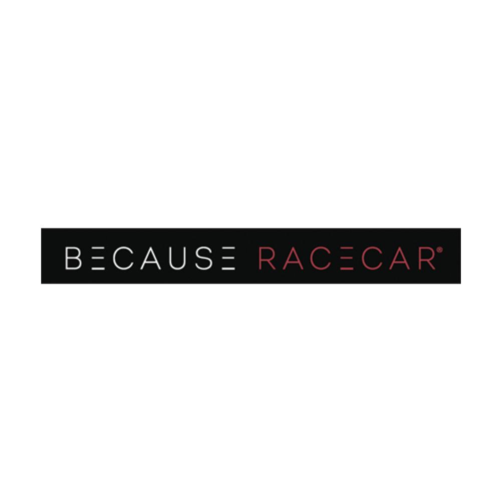 Because-Car.png