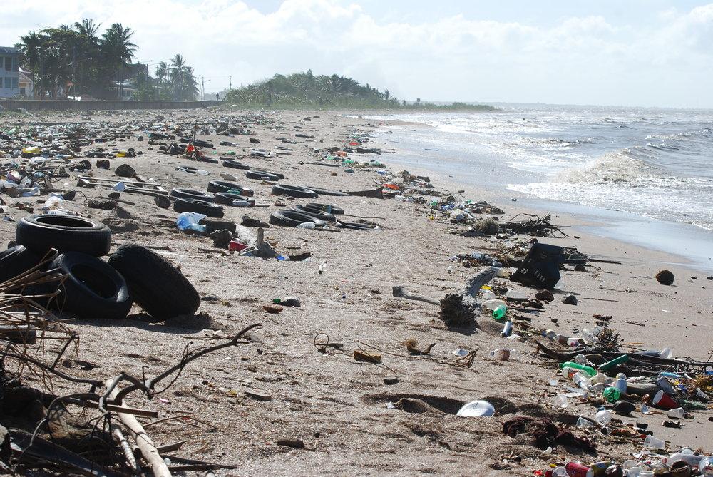 Littered+Beach.jpg