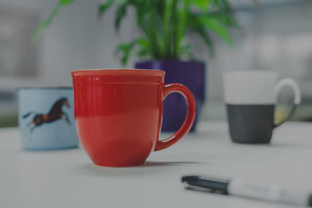 Cups smaller filter.jpg