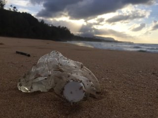 Plastic waste, Kauai, Hawaii