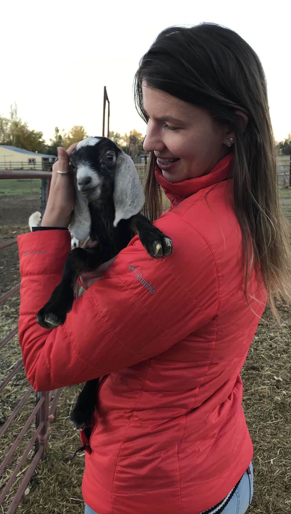 Visit your local farm, and maybe you too and play with baby goats on their birthday!