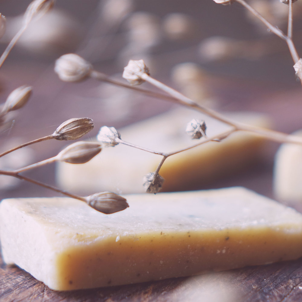 Living Naturally Soapnut shampoo bar